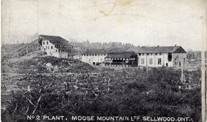 No2 plant Moose Mountain Sellwood