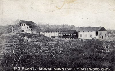 Looking Back at the Town of Sellwood
